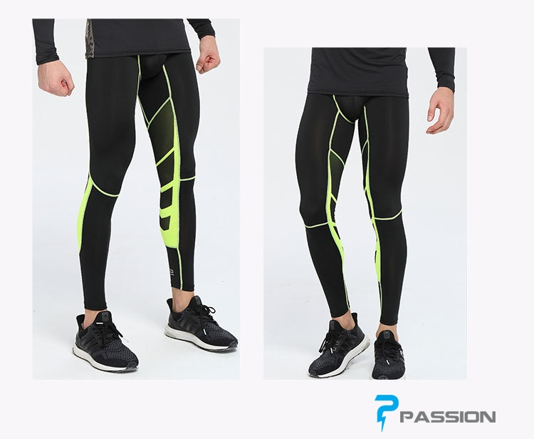 Quần legging tập gym nam cao cấp pro combat Z57