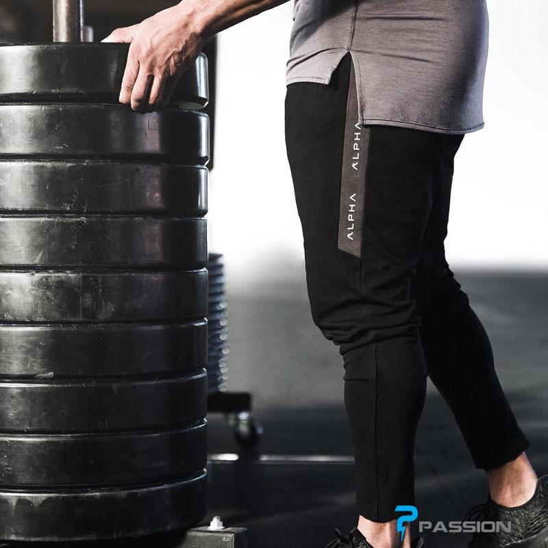 Quần dài tập gym nam Alpha Z74 2018 xọc xám